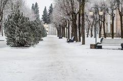 Stationnement de ville en hiver photo stock
