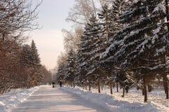 Stationnement de ville. Irkoutsk Photos libres de droits