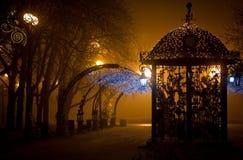 Stationnement de ville la nuit dans le regain Image libre de droits