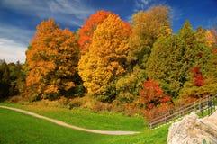 Stationnement en automne Photographie stock