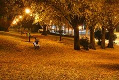 Stationnement en automne Photo stock