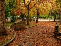 Stationnement en automne Image stock