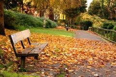 Stationnement en automne Photos stock