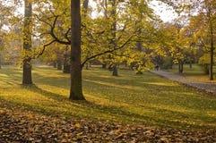 Stationnement en automne Photo libre de droits