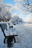 Stationnement en hiver Photographie stock libre de droits
