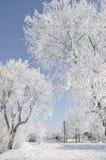 Stationnement en hiver Images stock