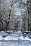 Stationnement en hiver Photos libres de droits