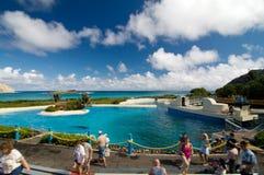 Stationnement Hawaï de durée de mer Photographie stock
