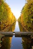 Stationnement jaune d'automne Photographie stock libre de droits