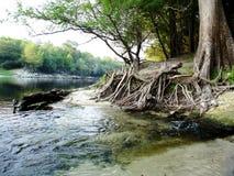 Stationnement la Floride de Suwannee Photo libre de droits