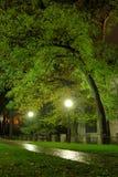 Stationnement la nuit Photo stock