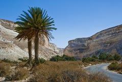 Stationnement national d'Ein Avdat dans le désert de Negev, Israël Images libres de droits