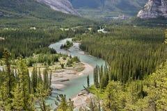 Stationnement national de Banff Photo libre de droits