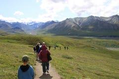Stationnement national de Denali Photo libre de droits