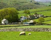Stationnement national de district maximal de l'Angleterre Derbyshire Photographie stock libre de droits