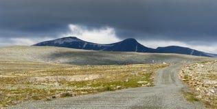 Stationnement national de Dovrefjell Images libres de droits