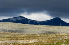 Stationnement national de Dovrefjell Photos libres de droits