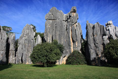 Stationnement national de forêt en pierre de Shilin Photographie stock libre de droits