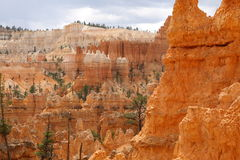 Stationnement national de gorge de Bryce Photo stock