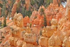 Stationnement national de gorge de Bryce Image stock