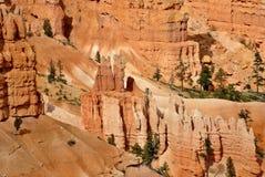 Stationnement national de gorge de Bryce Photos libres de droits