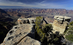 Stationnement national de gorge grande, Arizona, Etats-Unis Photos libres de droits