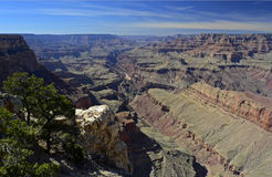 Stationnement national de gorge grande, Arizona, Etats-Unis Image stock