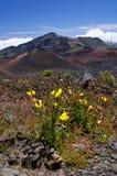 Stationnement national de Haleakala Images libres de droits