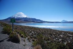 Stationnement national de Lauca - Chili Images libres de droits