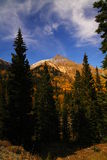 Stationnement national de montagne rocheuse image stock