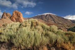 Stationnement national de Teide, Tenerife, Îles Canaries, Espagne Photos libres de droits