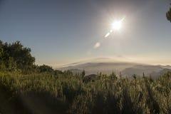 Stationnement national de Teide, Tenerife, Îles Canaries, Espagne Photo libre de droits