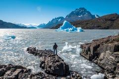Stationnement national de Torres del Paine images libres de droits