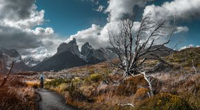 Stationnement national de Torres del Paine photographie stock