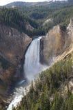 Stationnement national de Yellowstone - abaissez les automnes Photographie stock libre de droits