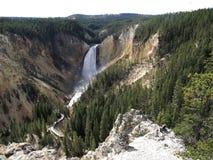 Stationnement national de Yellowstone - abaissez les automnes Images libres de droits