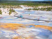 Stationnement national de Yellowstone, Etats-Unis Photographie stock libre de droits