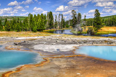 Stationnement national de Yellowstone, Wyoming, Etats-Unis photo libre de droits