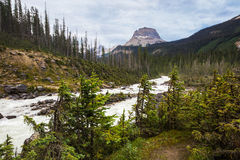 Stationnement national de Yoho Images stock