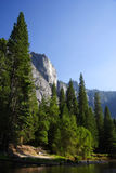 Stationnement national de Yosemite Image stock