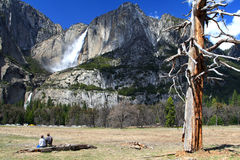 Stationnement national de Yosemite Photo libre de droits
