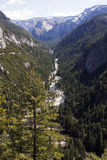 Stationnement national de Yosemite Photos stock