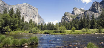 Stationnement national de Yosemite. Images libres de droits