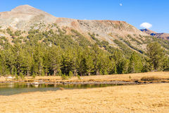 Stationnement national de Yosemite en Californie Photos stock