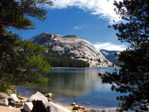 Stationnement national de Yosemite - la Californie Images stock
