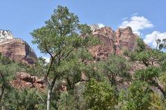 Stationnement national de Zion en Utah Images libres de droits