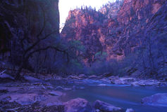 Stationnement national de Zion, Utah Images libres de droits