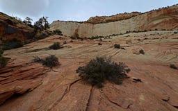 Stationnement national de Zion, Utah, Etats-Unis Image libre de droits