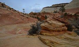 Stationnement national de Zion, Utah, Etats-Unis Photographie stock libre de droits