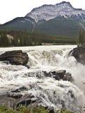 Stationnement national du Canada banff Photo stock